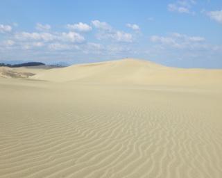 【コロナ対策情報付き】鳥取砂丘の見どころを徹底紹介!自然が織りなす神秘を見に行こう!