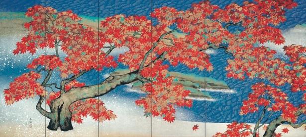 横山大観の代表作のひとつ「紅葉」(左隻・昭和6年)。大観作品の中で最も絢爛豪華