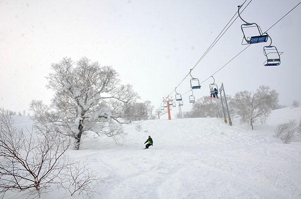各コースはスノーボードでの滑走もOK