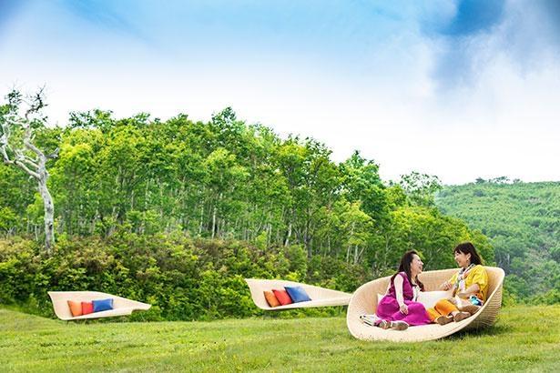 芝生に配置されたソファで豊かな緑を満喫