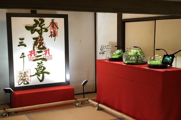 JR東海「そうだ京都、行こう。」のキャンペーンで、苔を用いたアート作品。2019年には京都市内8つの寺院で展示された