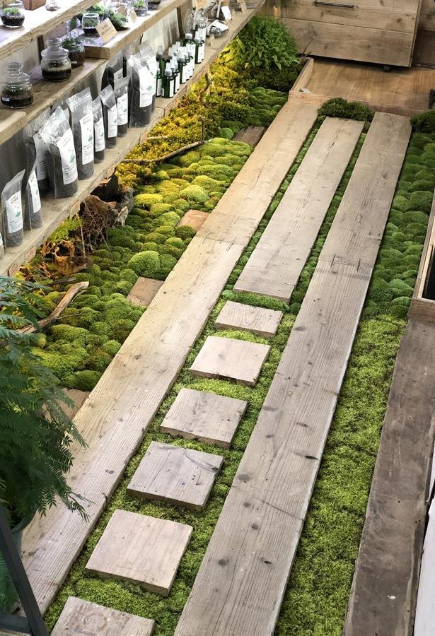 「moss-connect」の床を彩るかわいい苔。「今後は室内装飾にも挑戦し、扉を開けたら森に入ったと錯覚するようなカフェを開いて、そこでワークショップを開きたい」と今田さん