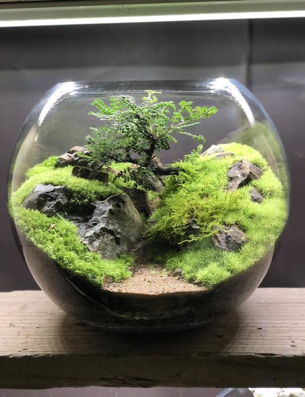 「moss-connect」では、常時50点以上の作品を販売。ほとんどが1点物なので、ピンとくる作品に出会ったら即入手したい