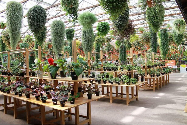 受付近くの「花売店」では花や苗を購入できるほか、栽培方法などの質問もできる