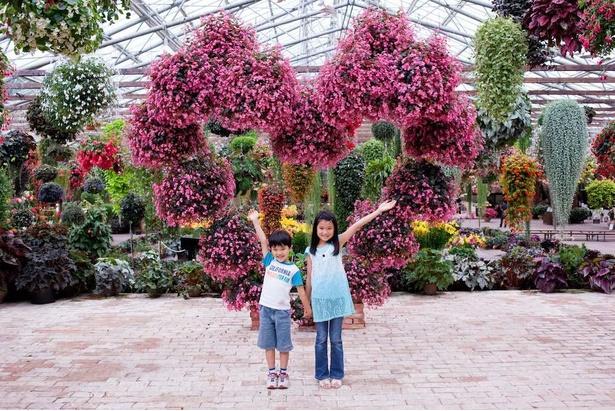 全身が入るくらいの大きなハート型の花のオブジェ「幸せのハート」で記念撮影
