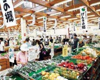名古屋から約1時間で行ける東海エリアの直売所3選!ドライブ気分で買い物へ