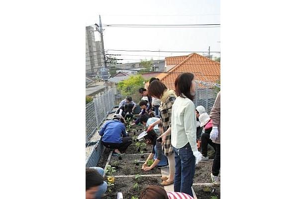 「クルム浜田山」では、入居者たちが苗植えを行った