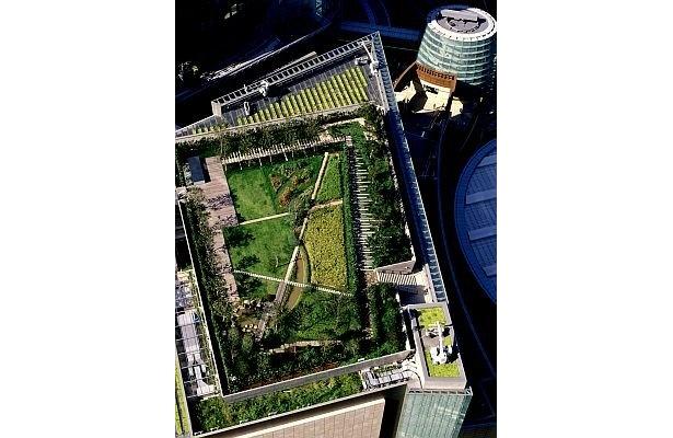 六本木ヒルズの屋上庭園、空撮写真。こんな場所に緑があるなんて…!