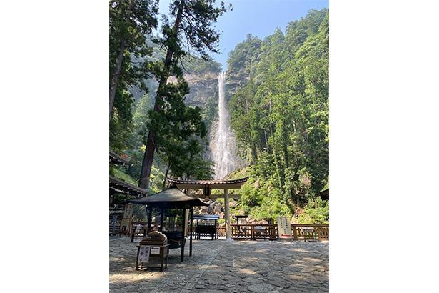 「那智四十八滝」の一の滝。滝の右手には、和歌山出身の生物学者・南方熊楠が粘菌の採取を行った那智山原始林(国天然記念物)が広がっている/那智大滝