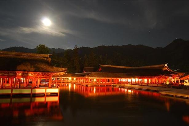 ライトアップされた夜の嚴島神社