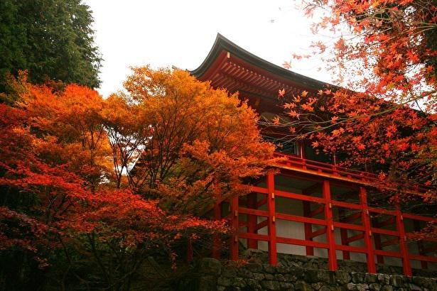 またの名を首楞厳院ともいう横川中堂は鮮やかな朱色