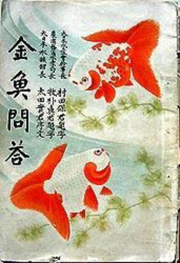 明治時代の飼育書「金魚問答」などを展示