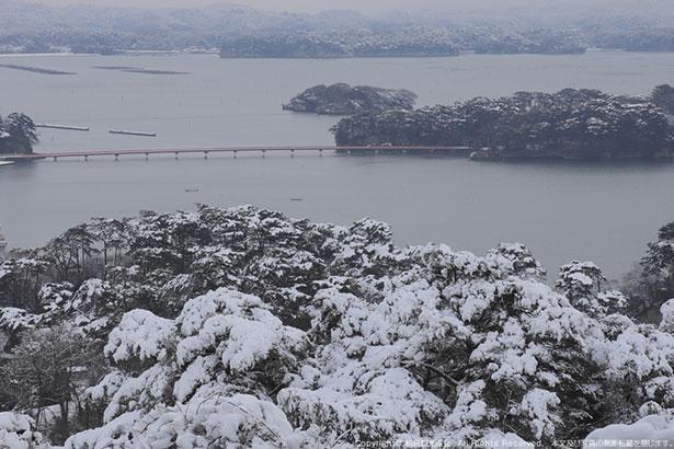 雪化粧した冬の松島は絵画のような美しさ
