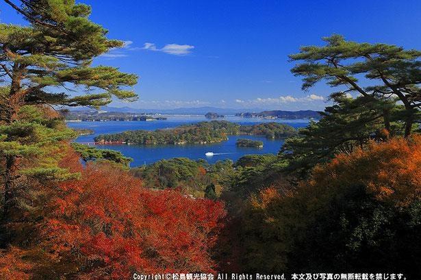 桜、紅葉、雪景色など季節ごとの絶景が楽しめる