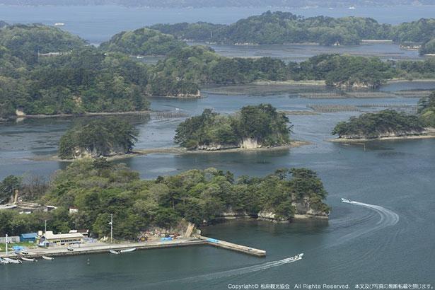 松島の形状を箱庭のように見られることから「壮観」の名が付いた大高森