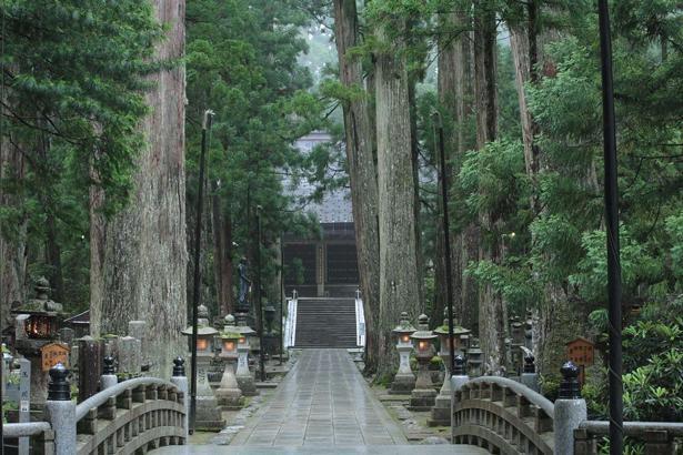 御廟に一番近い「御廟橋(ごびょうばし)」。36枚の橋板と橋全体を1と数え、金剛界37尊を表現。服装を正し、一礼して渡ろう/奥之院