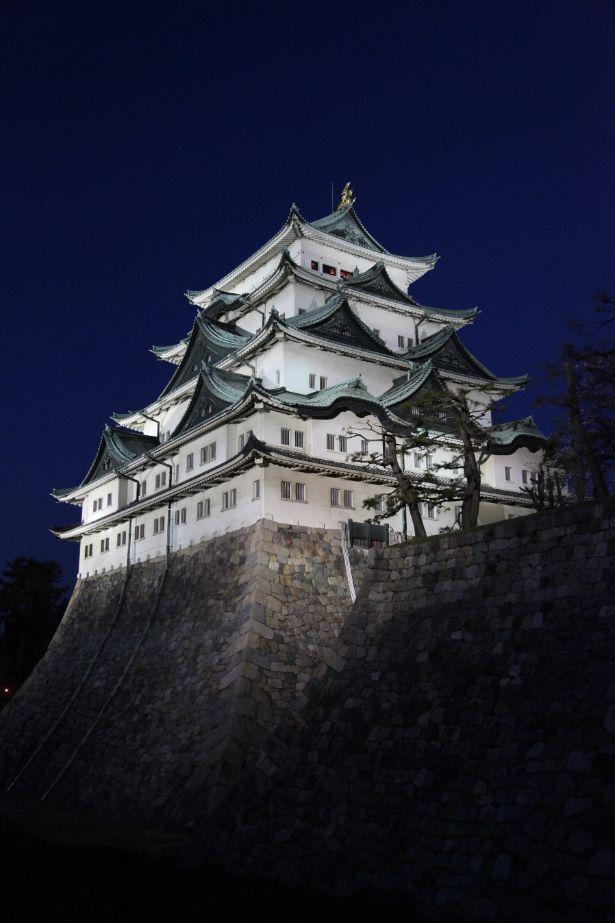 春の桜まつりでは日没後にライトアップを開催。普段とは違う名古屋城を楽しめる