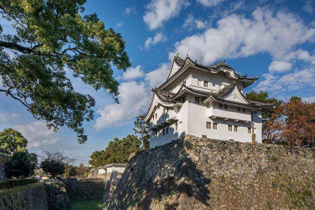 鬼瓦に徳川家の家紋である葵紋を用いた東南隅櫓