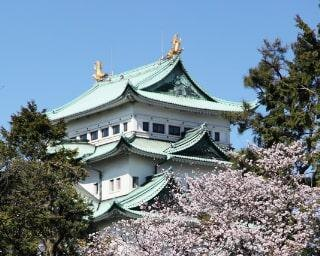 【コロナ対策情報付き】名古屋城の楽しみ方完全ガイド!見どころやおすすめコースを紹介