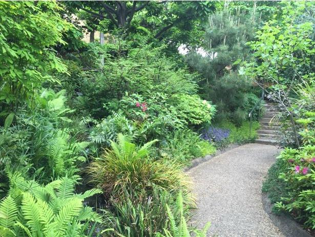 緑に包まれた小道を散策しよう