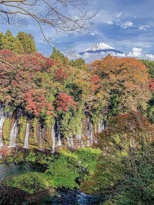 白糸の滝(静岡県富士宮市)