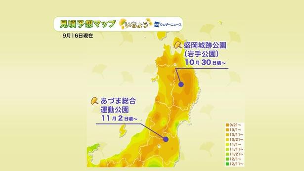 2020年 東北地方の紅葉(イチョウ)見頃予想マップ(9月16日現在)