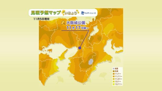 2020年 近畿地方の紅葉(イチョウ)見頃予想マップ(11月5日現在)