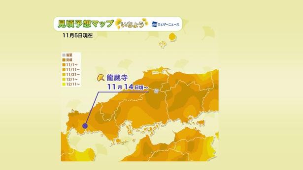 2020年 中国地方の紅葉(イチョウ)見頃予想マップ(11月5日現在)