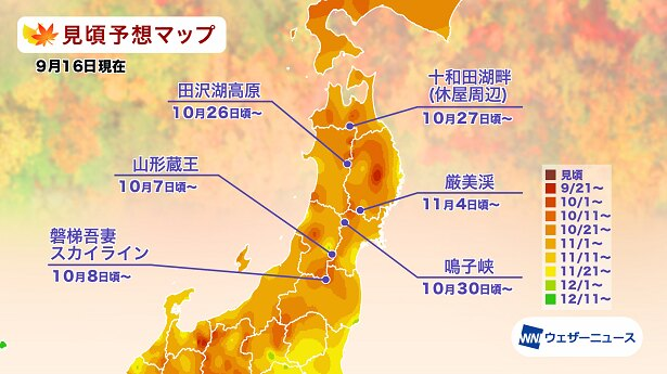 2021年 東北の紅葉(モミジ)見頃予想マップ(9月16日現在)