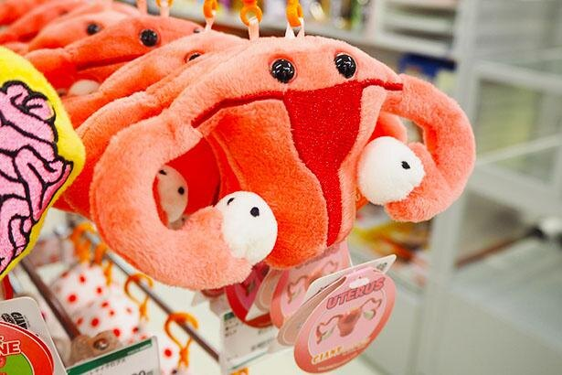 色んな臓器をマスコットにしたこちらの商品。こちらは子宮をモチーフにしていて、女子高生に人気なのだとか