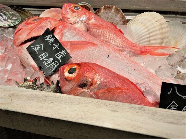 【写真】旬の食材は希少部位、珍しい魚介なども食べられる。開放的な店内からは絶景が望める