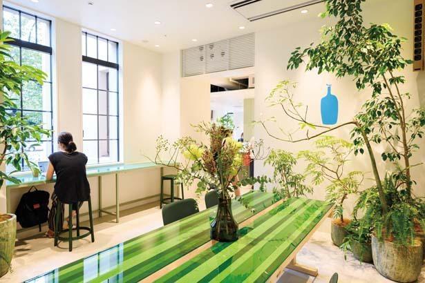 黒板の緑や窓から見える高瀬川沿いの木々などからインスピレーションを得て、緑色をちりばめた空間デザインになっている/ブルーボトルコーヒー 京都木屋町カフェ
