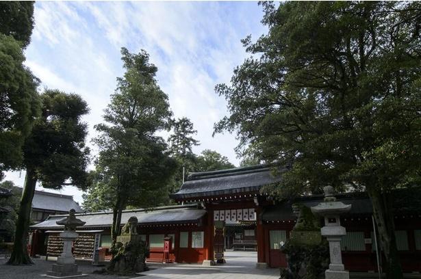 【写真】朱色に塗られた中雀門をくぐって拝殿へ