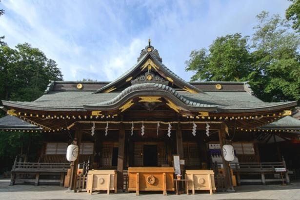 本殿の前に建つ拝殿でお参り。流造・切妻千鳥破風・銅板葺素木造の風格ある造り