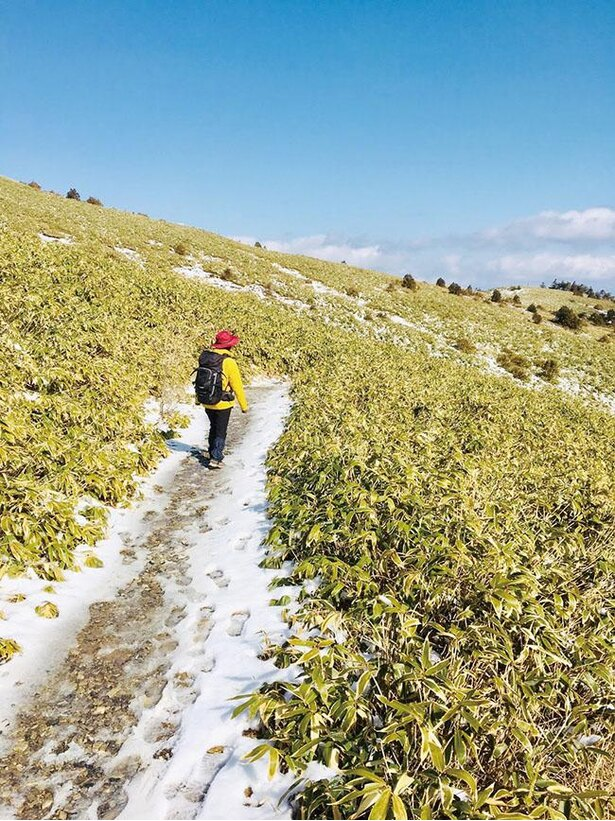 四季折々の美しい自然が登山者を惹きつける