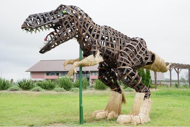 【写真】新作の「ティラノサウルス」の全身姿。完成作品はぜひ現地で見てみよう