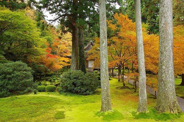 「聚碧園」と「有清園」の2つの庭園をはじめ文化財や、歴史的建築物など見どころが満載