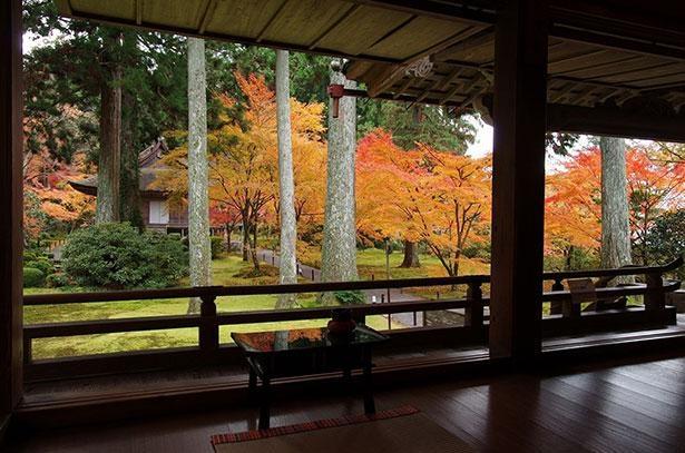 宸殿より往生極楽院を眺める「有清園」。絵画のような景観が目の前に広がる