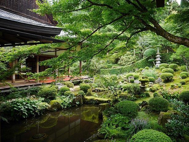 「聚碧園」を望む客殿の縁側ではお抹茶を楽しむこともできる(有料)