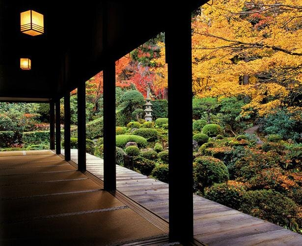 紅葉時に客殿から望む「聚碧園」は息を吞む美しさ