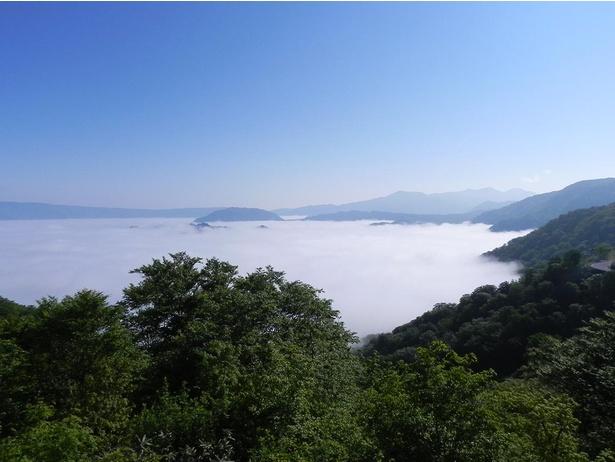 条件が整った夏の朝には雲海が広がる