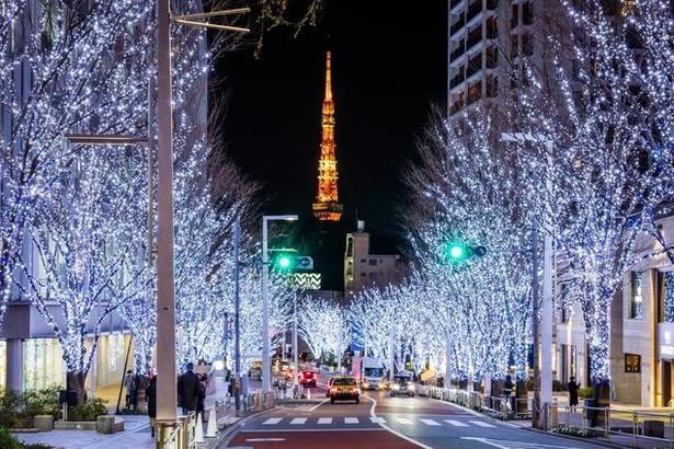 Roppongi Hills Christmas 2019 けやき坂 イルミネーション