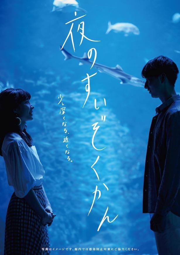 京都水族館で好評開催中の「夜のすいぞくかん」