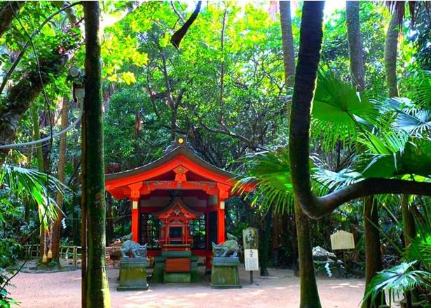 木々に囲まれた「元宮(もとみや)」。青島は「青島亜熱帯性植物群」として、国の天然記念物に指定されている