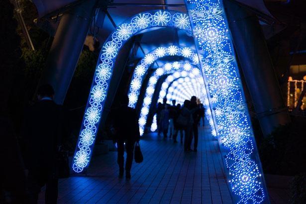フォトジェニックな光の回廊「ミルキーウェイ」