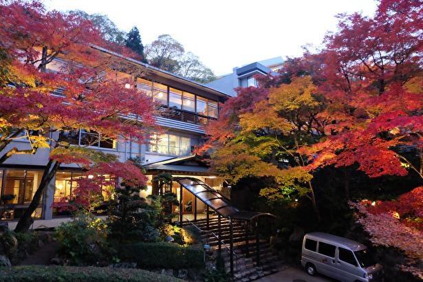 先代が惚れ込んで宿の場所を移すほどに美しい紅葉景色