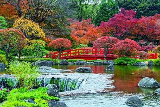 都心にありながら1万坪を超える日本庭園