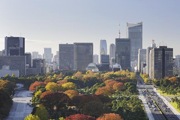 都市の高層ビルと紅葉景色が一望できる