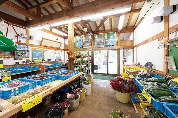近隣の契約農家直送の野菜やフルーツ、切り花をリーズナブルな価格で販売 / 道の駅 大桑