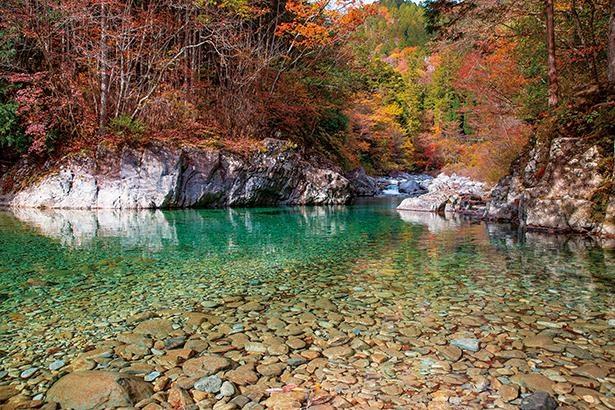 狸ヶ淵(写真)や熊ヶ淵など、小路から川へ降りられる場所も多く撮影におすすめ / 阿寺渓谷